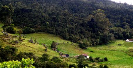 Reserva Biología Encenillo (Guasca, Cundinamarca
