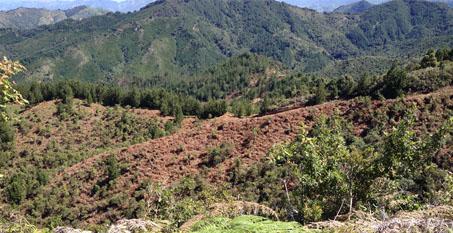 Reserva Biológica El Silencio (El Retiro, Antioquia).