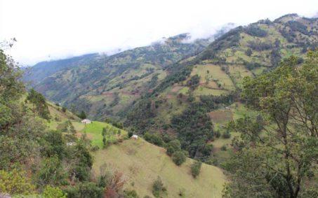 desarrollo sostenible fundacion natura colombia