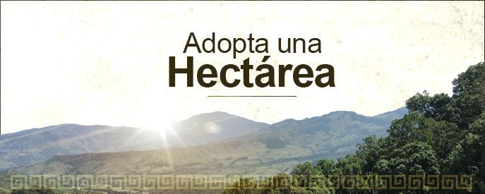 programa-adopta-una-hectarea-fundacion-natura