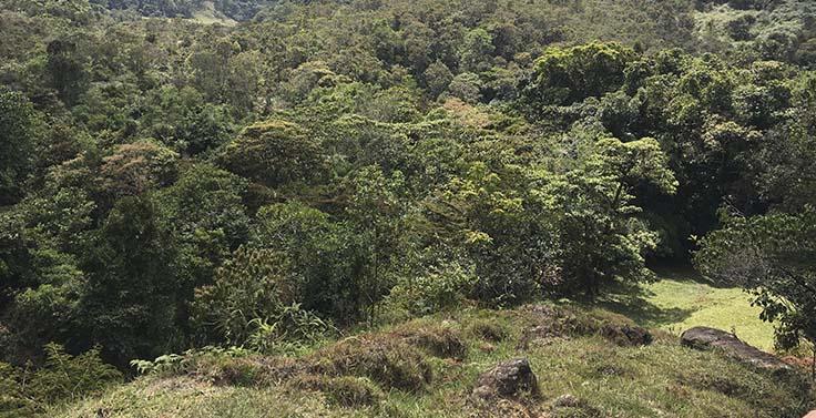 reserva-cachalu-natura (1)