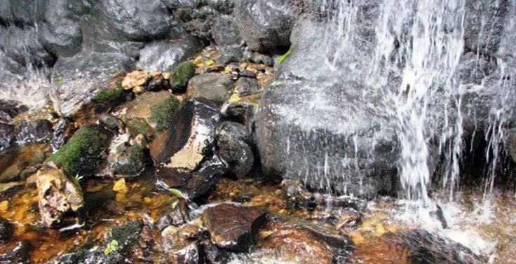 reserva-cachalu-natura (6)