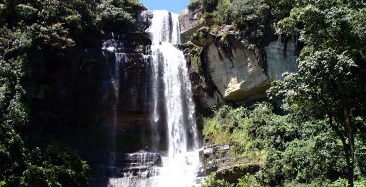 reserva-cachalu-natura (8)