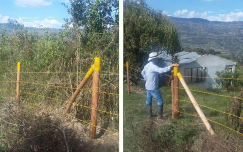 Proyecto 005 Gobernación De Cundinamarca | Fundación Natura