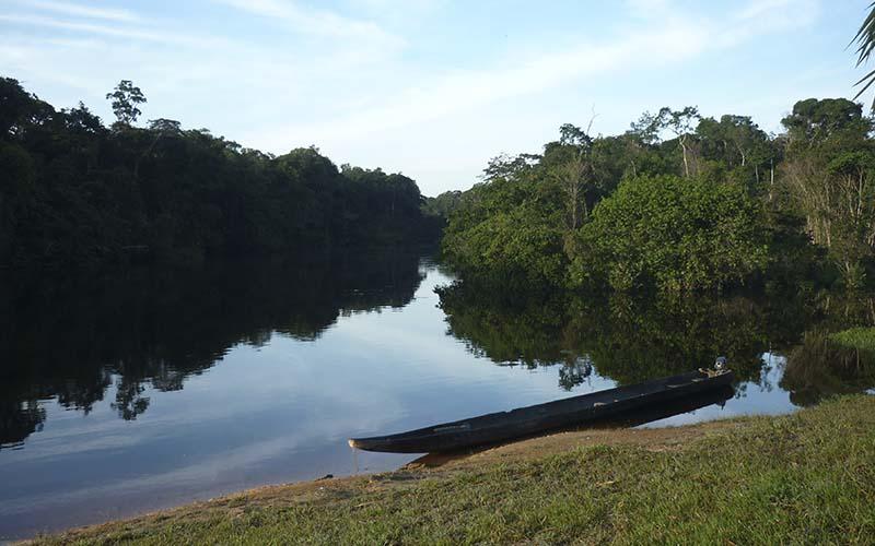 Informacion Y Dialogo Amazonia