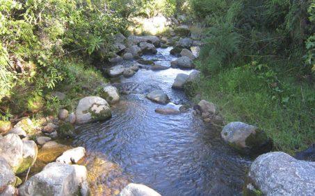 Quebrada El Ramo