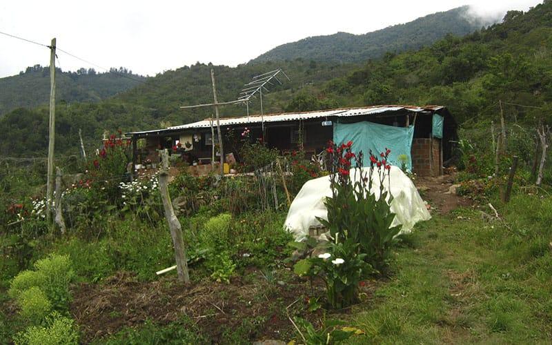 Predio Rural Bajo Acuerdo ARA