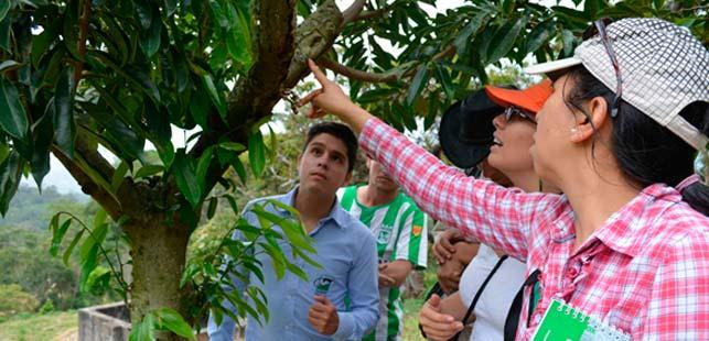 Fundación Natura, Isagén Y El ICA Siguen Atendiendo Llamados De La Comunidad De Girón (Santander)