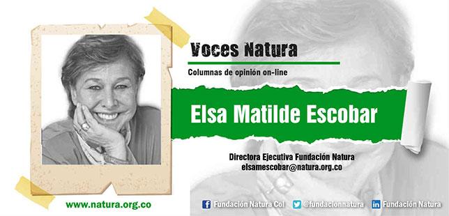 Triple Alianza 'Gobierno-empresas-sociedad Civil', Definitiva Frente Al Cambio Climático