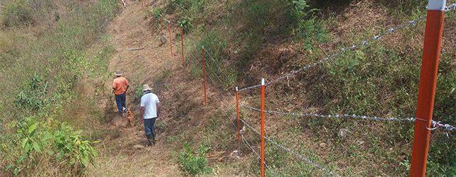 BOLETÍN/ En Casanare, Restauran Bosque Seco En áreas Degradadas Por Ganadería En Piedemonte Del Cerro Zamaricote