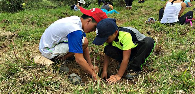 Campaña 'Regala Un Árbol' Sembró 99 árboles Durante El 2016