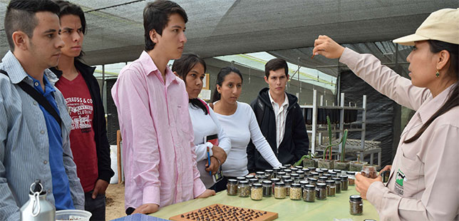 ESTUDIANTES QUIMBO PARA SUBIR A LA WEB1
