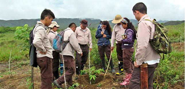 En El Quimbo, Ya Están Monitoreando Las Siembras Y Otras Estrategias Para La Restauración Del Bosque Seco