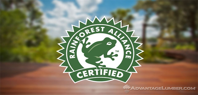 Rainforest Alliance Y UTZ Se Fusionarán Para Formar Una Organización Más Fuerte