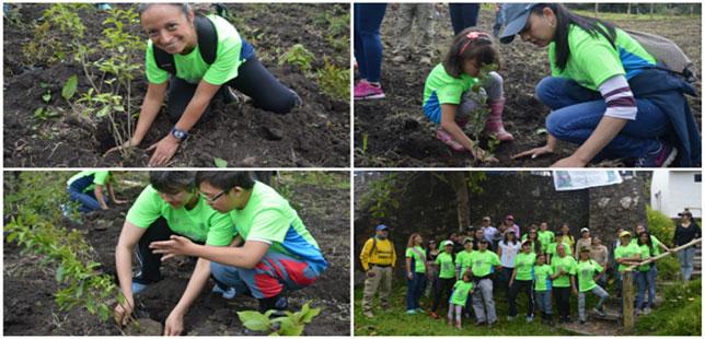 Participantes De Carrera Verde Sembraron 2 Mil árboles En Antioquia Y Cundinamarca