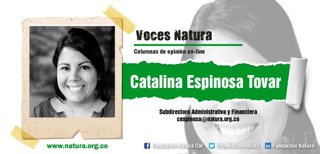 El Reto De La Fundaciones En Colombia Ante Un Entorno Cambiante