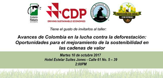 """""""Avances De Colombia En La Lucha Contra La Deforestación: Oportunidades Para El Mejoramiento De La Sostenibilidad En Las Cadenas De Valor"""""""