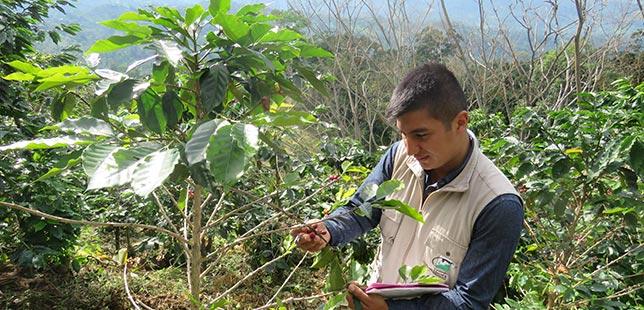 Continúa Monitoreo Agronómico En Zona De Influencia Del Embalse Topocoro