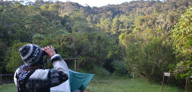 Senderismo Cerca A Bogota Colombia Fundacion Natura