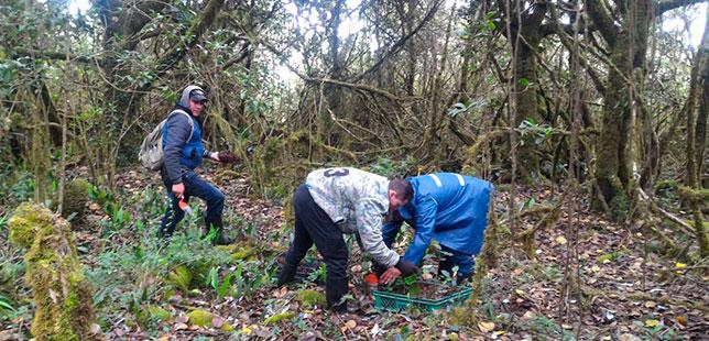 Corporaciones Autónomas Regionales, Conocieron Avances De Los Procesos En El Marco Del Convenio EPM-Fundación Natura