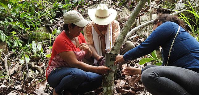 Continúa El Monitoreo De Fauna En Cultivos Del área De Influencia Del Embalse Topocoro En Santander