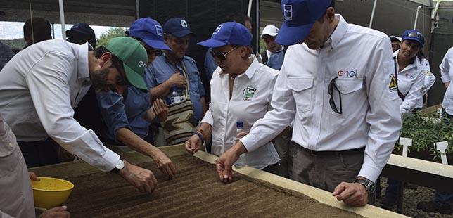 Con éxito Termina Plan Piloto De Restauración De Bosque Seco Tropical, En El Huila