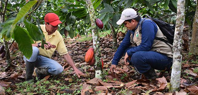 """Agricultores De Santander Conocen Información Sobre Posible Llegada De """"El Niño"""""""