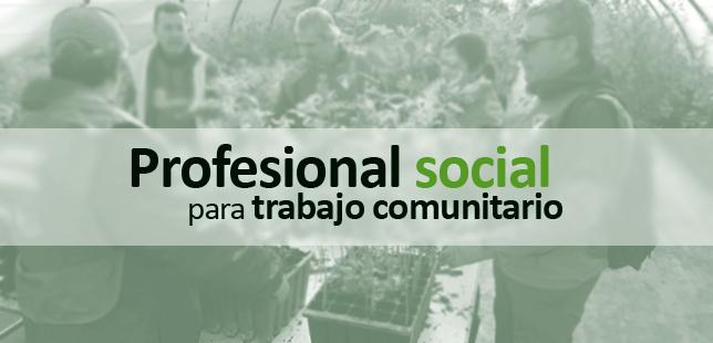 Profesional Social Para Trabajo Comunitario