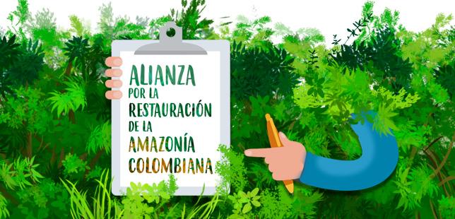 Alianza Por La Restauración De La Amazonía Colombiana