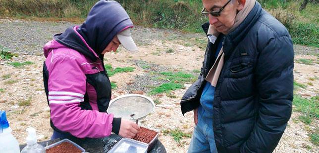 Generando Conocimiento Sobre Especies Nativas De Ecosistemas Altoandinos