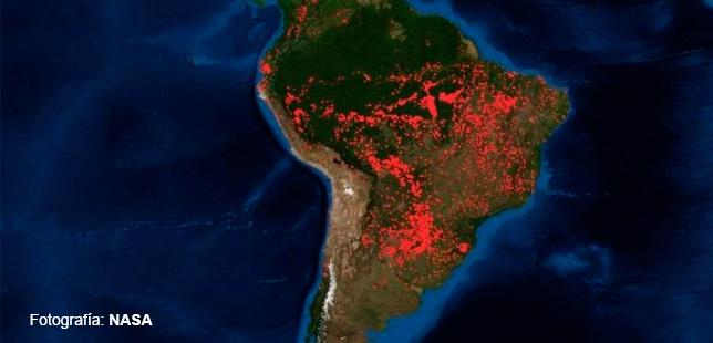 Fundación Natura Se Pronuncia Por Los Incendios En La Amazonía