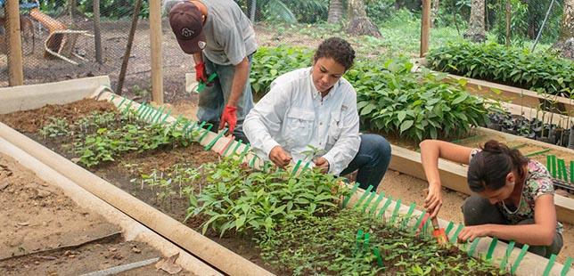 Segundo Intercambio De Experiencias Entre Jardín Botánico De Cartagena Y El Plan De Restauración Ecológica En El Huila