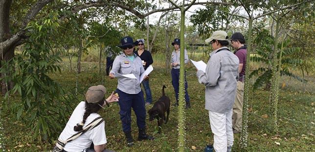 Instituto Humboldt Apoyará A Enel-Emgesa Y Fundación Natura En La Consolidación Del Centro De Investigación De Bosque Seco Tropical