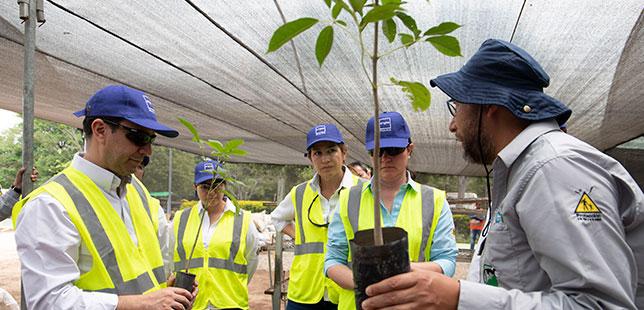 Gerente General De ENEL-EMGESA Visitó El Programa De Restauración Ecológica De Bosque Seco Tropical