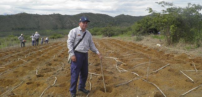Del Vivero A La Siembra: Cuarenta Años De Pasión Por Los Bosques