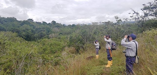 El área De Restauración Ecológica De Bosque Seco Tropical De El Quimbo, Ruta De Avistamiento Del Global Big Day En El Huila 2020